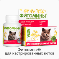 phytomins-castrated-cats-treatment